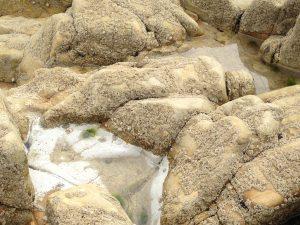 Steine am Strand von Cornwall