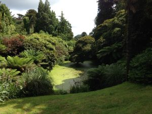 the-lost-gardens-of-heligan-in-suedengland-11