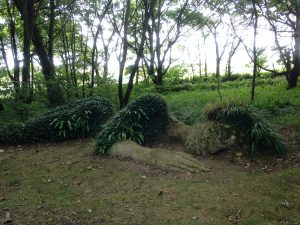 the-lost-gardens-of-heligan-in-suedengland