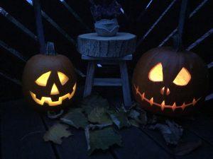 halloween k rbis schnitzen so wird es gemacht bee in. Black Bedroom Furniture Sets. Home Design Ideas