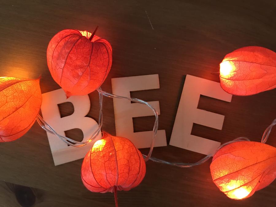 Awesome Mein Blogname Umringt Von Einer Herbstlichen Lichterkette   Deko