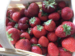 Erdbeeren zum Rezept für Erdbeermarmelade - süß und fruchtig