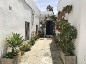 Hinterhof in Vejer de la Frontera - Andalusien